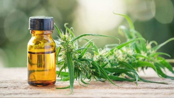 How to Advertise Your Online CBD Business on Facebook and Instagram